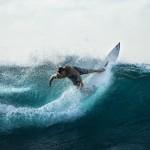 surfing-926822_1920_1